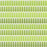 Green wheat seamless pattern. Vector illustration - eps 8 Royalty Free Stock Images