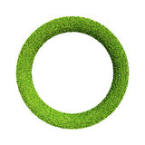 Green Wheel Stock Image
