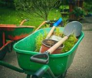 Green wheelbarrow Stock Image