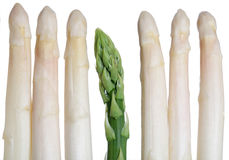 Green and white Asparagus. Isolated on white Royalty Free Stock Images