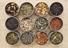 Green, white, black and herbal tea Stock Photography