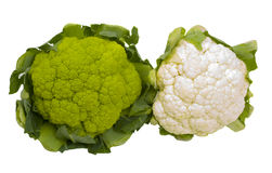 Green and White Cauliflower Isolated Royalty Free Stock Photo