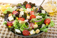 Green white cheese salad Royalty Free Stock Photography