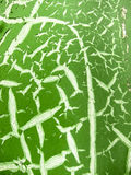 Green-and-white crack  texture Royalty Free Stock Photos