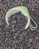 Green cup among a lot of coffee beans. Green and white cup among a lot of coffee beans royalty free stock photography