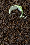 Green cup among a lot of coffee beans. Green and white cup among a lot of coffee beans stock photos