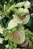 Green white floral arrangement Royalty Free Stock Image