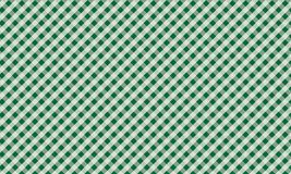 Green and white gingham background texture.Vector illustrat. Firebrick Gingham green and white pattern. Texture from rhombus/squares for - plaid, tablecloths royalty free illustration