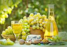 Green-White grapes and white wine Stock Photos