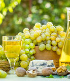 Green-White grapes and white wine Stock Photo