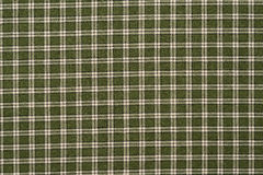 Green and White Plaid Royalty Free Stock Images