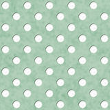 Green and White Polka Dot Fabric Background Stock Images