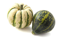 Green white pumpkins Royalty Free Stock Photography