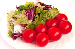 Green, white and red. Geen salat with cherry romatos on the white plate Stock Images