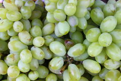 Green-white ripe grapes ready to be eaten Stock Photography