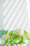 Green and white roses Stock Photography