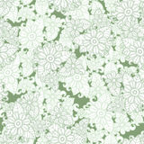 Green and white seamless pattern background. Spring floral texture. Abctract flower vector. Stock Image