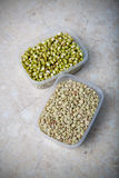 Green white small Beans Stock Images