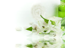 Green and white (SPA concept) Stock Photography