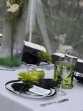 Green and white table setting Stock Photography