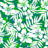 Green and white tropical flowers silhouettes Royalty Free Stock Photo
