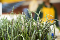 Green wild asparagus tip heads bunch on market stall Stock Photography