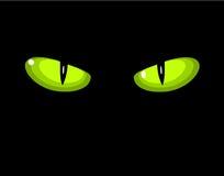 Green wild cat eyes. Green dangerous wild cat eyes in darkness Stock Image