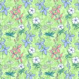Green wild flowers seamless pattern Royalty Free Stock Photos