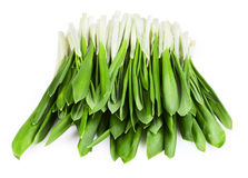 Green wild garlic. Isolated on the white background. Clipping Path stock photo