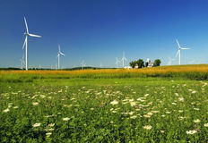 Green Wind Energy. Wildflowers and Wind turbines in the fields of tomorrow royalty free stock photography