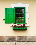 Green window with flower box and shutters. Sample Royalty Free Stock Image