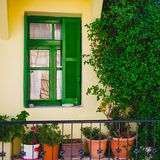 Green window with flowerpots Royalty Free Stock Photo