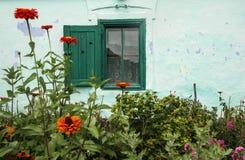 Green window stock photography