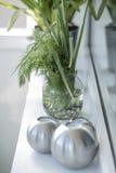 Green windowsill. Green dills and onions on a white windowsill Royalty Free Stock Image