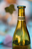 Green wine bottle Stock Image