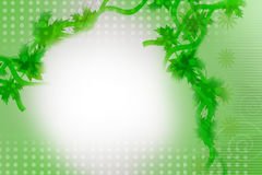 Green wine with leaves, abstract background Royalty Free Stock Image