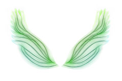 Green wings Royalty Free Stock Photos