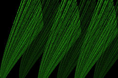 Green Wings Design. Green abstract wings design layered and textured background Royalty Free Stock Photography
