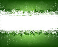 Green winter background Royalty Free Stock Image