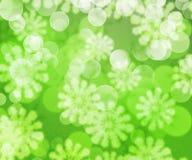 Green Winter Bokeh Background Stock Photos