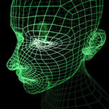 Green Wireframe Human Head Mode Royalty Free Stock Photo