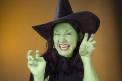 Green Witch. Costume witch with green skin - fun and spooky