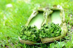 Green woman shoes with flowers in green grass Royalty Free Stock Photo