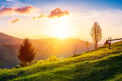 Green wonderland at purple sunset. Gorgeous countryside in mountains under the beautiful sky. wooden fence along the path uphill the grassy meadow. wonderful stock photos