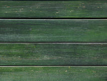 Green  wood background. Green boards connected as a wall Royalty Free Stock Images