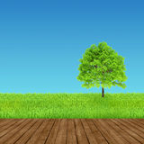 Green and wood background environment Royalty Free Stock Photo