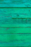 Green wood background Royalty Free Stock Images