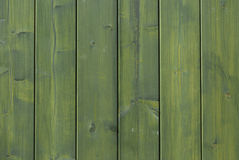 Green wood background Royalty Free Stock Image