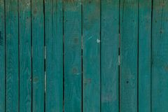 Green wood background texture. Background of green boards Stock Images