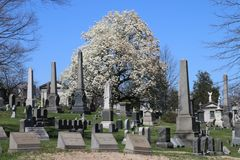 Green-Wood cemetery in Brooklyn, NY Stock Photos